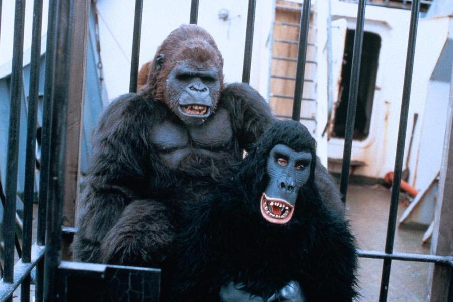 Trading Places Gorilla